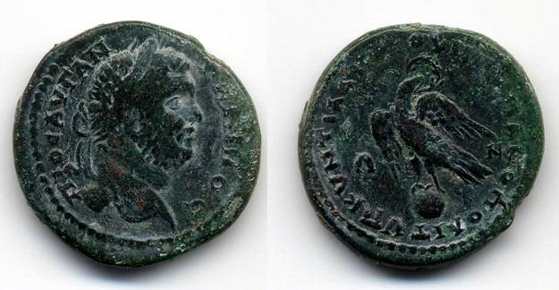 Ancient Coins - Caracalla AE 26 Markianapolis, Moesia Inferior, AVF/VF, Eagle on Globe
