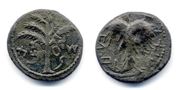 Ancient Coins - Bar Kochba, Middle Bronze, VF, Year 2 - 133/134 C.E.