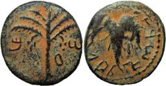 Ancient Coins - The Bar Kokhba-uprising (132-136 CE). year 2.