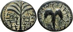 Ancient Coins - The Bar Kokhba-uprising (132-136 CE). Mildenberg plate coin.