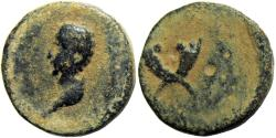 Ancient Coins - JUDAEA. Herodian Dynasty, Agrippa I (A.D. 37-44) for Agrippa II (A.D. 49/50-94/95).