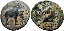 Ancient Coins - SELEUKID EMPIRE. Seleukos I Nikator. 312-281 BC.  Rare and stunning.