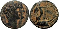 Ancient Coins - PHOENICIA. Tripolis. Autonomous issues, temp. Augustus, 27 BC-AD.