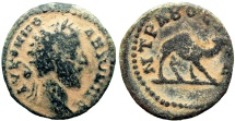 Ancient Coins -  ARABIA, Bostra. Commodus. AD 177-192.