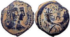 Ancient Coins - Nabataean Kingdom, Malichus II, 40 - 70 A.D.