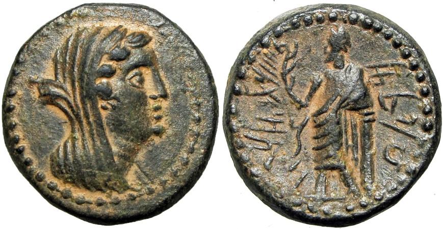 Ancient Coins - PHOENICIA, Marathos. Berenike II  221/0-152/1 BC. a superb example !!!