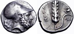 Ancient Coins - LUCANIA, Metapontion. Circa 340-330 BC. AR Nomos .