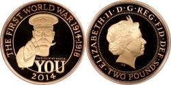 World Coins - Great Britain 2014 WWI 100th Anniversary Gold Proof 2 Pounds w/Box and COA