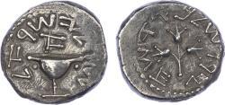 Ancient Coins - Judaea, First Revolt, Silver Tetradrachm
