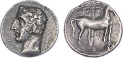 Ancient Coins - Carthago Nova (Hannibal?) Silver Shekel