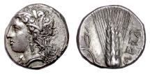 Ancient Coins - LUCANIA, Metapontion. AR Nomos, circa 330-290 BC. Demeter / Barley ear
