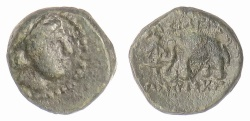 Ancient Coins - SELEUKID KINGS, Antiochos III 'the Great'. AE denomination D, Sardes mint. Elephant