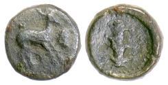 Ancient Coins - KYRENAICA, Kyrene. AE 1/2 unit, 308-305 BC