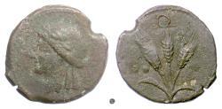 Ancient Coins - SICILY.  AE sextans, late 2nd Century BC. Apollo / Three Grain Ears.  RARE