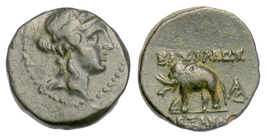 Ancient Coins - SELEUKID, Alexander I Balas. AE denom C, Antioch, 152-145 BC. Dionysos / Elephant. RARE
