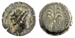 Ancient Coins - SELEUKID, Antiochos III 'the Great'. AE denom D, Tyre mint, 198-187 BC. Date palm tree