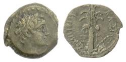 Ancient Coins - SELEUKID KINGS, Alexander I Balas. AE denom D, Tyre mint, 146/5 BC. Date palm