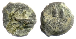 Ancient Coins - SELEUKID KINGS, Antiochos VII. AE denom D, Antioch mint. 134/3 BC. Pilei with stars