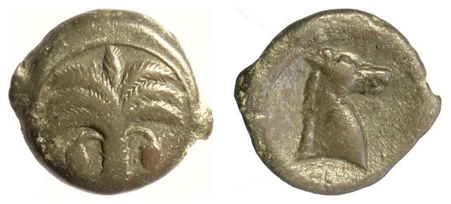 Ancient Coins - ZEUGITANA, Carthage. AE 19, circa 325-275 BC.  Palm tree / Horse head
