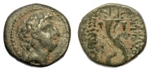 Ancient Coins - SELEUKID KINGS, Antiochos VIII Epiphanes. AE denomination B, Antioch mint