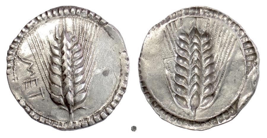 Ancient Coins - Lucania, METAPONTION, AR Nomos, circa 540-510 BC. Barley ear / incuse barley ear