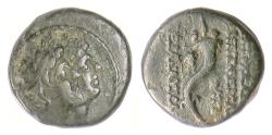Ancient Coins - PHOENICIA, Ake-Ptolemais. AE 14, 2nd century BCE. The Dioskouroi / Cornucopia