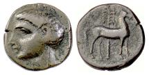 Ancient Coins - SPAIN, Carthago Nova, Roman Occupation. AE unit, circa 209-203 BC. (Scipio Africanus?) / Horse