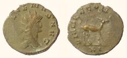 Ancient Coins - GALLIENUS. Antoninianus, Rome mint. Struck 267-268 AD. Antelope