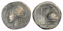 Ancient Coins - CAMPANIA, Neapolis. AE 20, circa 250-225 BC. Apollo / Lyre and omphalos