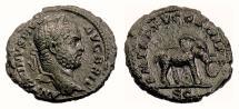 Ancient Coins - CARACALLA. AE as, Rome, 212 AD. Elephant. RARE