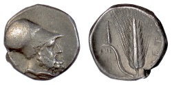 Ancient Coins - LUCANIA, Metapontion. AR Nomos, circa 340-330 BC. Leukippos / Barley ear