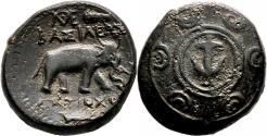 Ancient Coins - ANTIOCHOS I AE17. EF/VF+. Antioch mint. Macedonian Shield - Elephant.