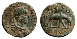 Ancient Coins - ALEXANDRIA TROAS (Maximinus I Thrax) AE22. VF+/EF-. Horse/Tree - COL TROA.