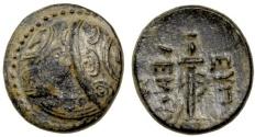 Ancient Coins - Caria, Mylasa AE15, c. 341 BC