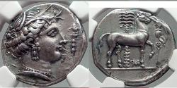 Ancient Coins - ENTELLA Sicily 320 BC Tetradrachm RARE  Silver Greek Coin EX JAMESON COLL. NGC Ancients AU Strike: 4/5 Surface: 4/5