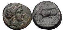 Ancient Coins - THESSALY.LARISSA. Bronze, 360 B.C. Head of Nymph/Horse grazing.