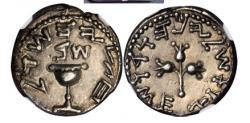 Ancient Coins - JEWISH Roman War YEAR 2 Ancient 67 AD Silver 1/2 Shekel JERUSALEM NGC AU