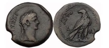 Ancient Coins - CLAUDIUS, Alexandria 52 AD. Bronze. Eagle.