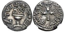 Ancient Coins - JEWISH Roman War YEAR 2 Ancient 67 AD Silver 1/2 Shekel JERUSALEM NGC