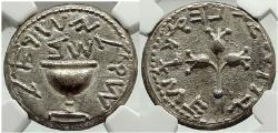 Ancient Coins - 1st JEWISH Great Revolt War vs Romans 68 AD Silver Shekel JERUSALEM Coin NGC AU 4/5; 4/5