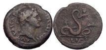 Ancient Coins - EGYPT: ALEXANDRIA, Dated 92-93 A.D., Bronze Diobol, Agathodaimon Serpent.