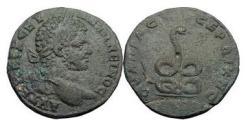Ancient Coins - CARACALLA, Serdica, 200 AD Bronze, Coiled Serpent. Roman Provincial Coin.