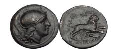 Ancient Coins - LYSIMACHOS, Trace, 305 BC. Bronze. Athena. Lion. Perfect centering. Superb!