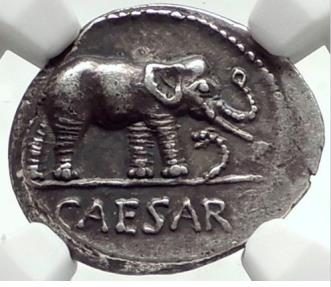Ancient Coins - JULIUS CAESAR 49 BC Elephant Serpent Authentic Ancient SILVER Roman Coin NGC CH XF