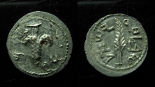Ancient Coins - JUDAEA, Bar Kochba Revolt. 132-135 CE. Silver Zuz – Denarius (17mm, 3.1 g). Dated year 2 (133/4 CE).