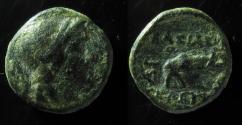 Ancient Coins - Seleukos I Nikator, 312-280 BC. AE13mm, Ex-Rare