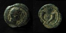 Ancient Coins - Egypt, Alexandria. Hadrian AE Obol. 20 mm, 5.7 g.