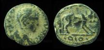 Ancient Coins - PETRA, ELAGABALUS, 218-222 AD.  FOUNDER WITH PAIR OF OXEN.