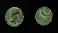 Ancient Coins - Judaea, Ascalon. Augustus AE 14 mm. Unusual Shape of Cornucopias!