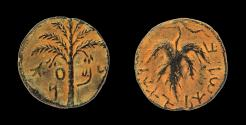 Ancient Coins - Judaea, Bar Kokhba Revolt AE 25 mm. Undated, attributed to year 3 (= 134/135 CE).